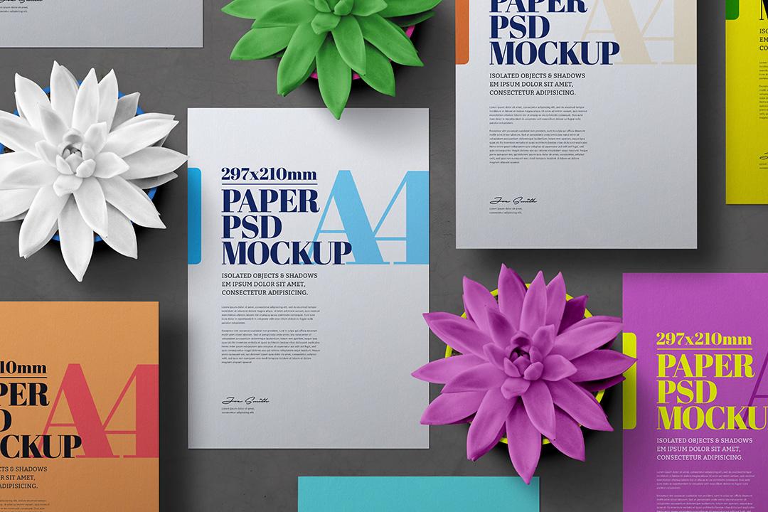 a4-flyer-mockup-set-cactus-plant-1-avelina-studio-1