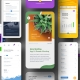 app-ui-screen-mockup-phone-presentation-005-avelina-studio-1